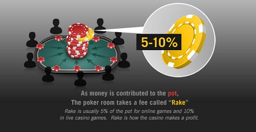 Online Poker Rake